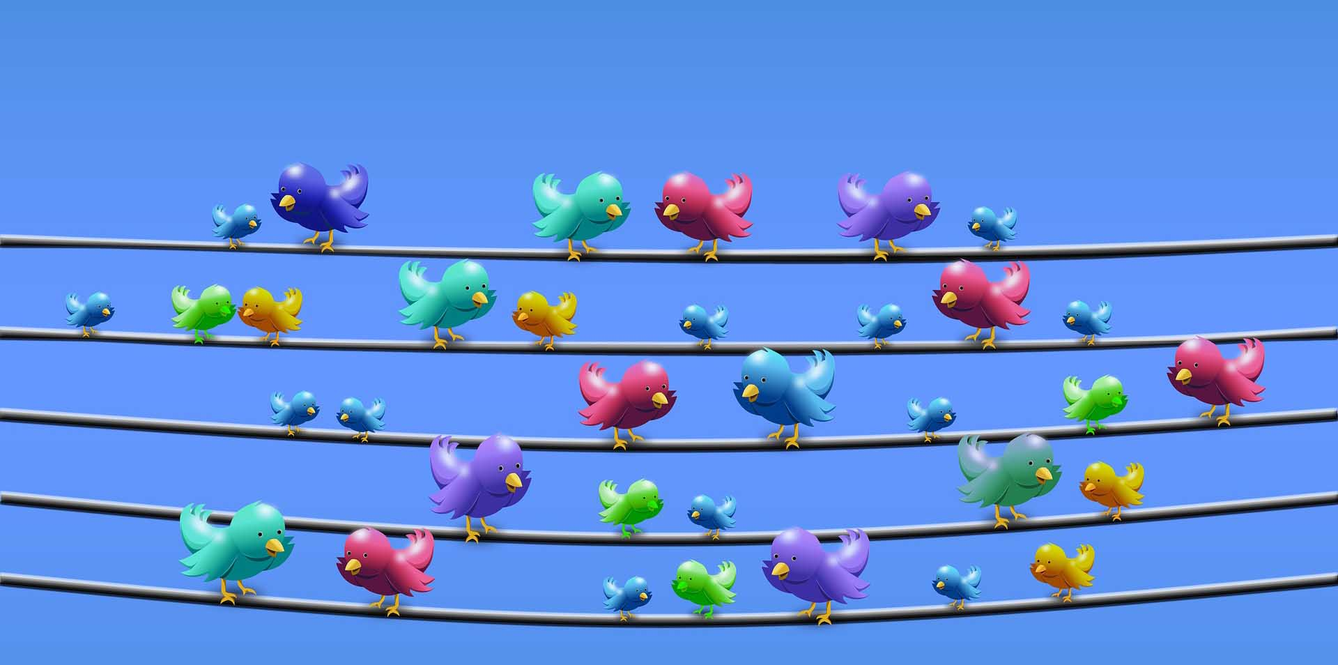 Twitter And Marketing: Steps To Financial Success